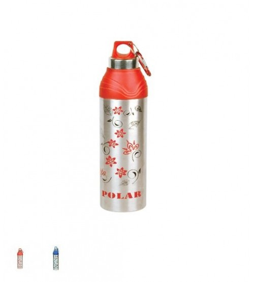 Good Day Polar Water Bottle (600)
