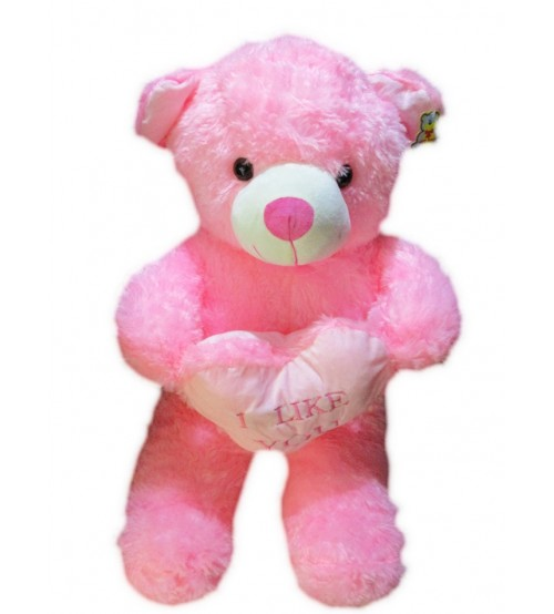 I Like you Teddy