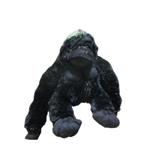 Black Chimp Teddy